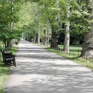 парк врана