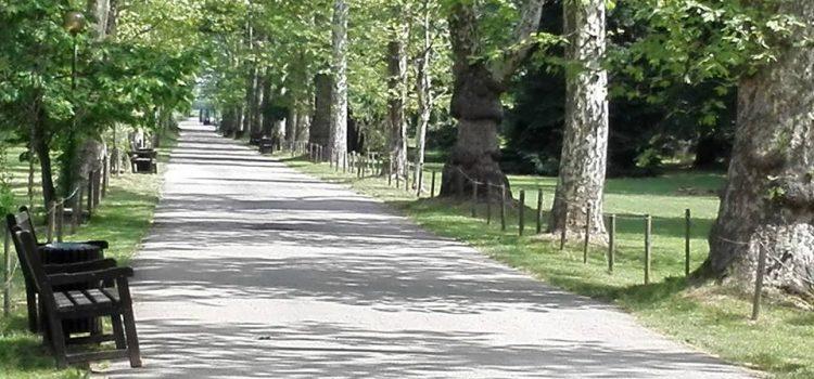 На 24 май 2018 г. – вход свободен в парк Врана